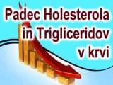 Padec holesterola in trigliceridov v krvi