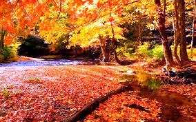 Čudovita jesen